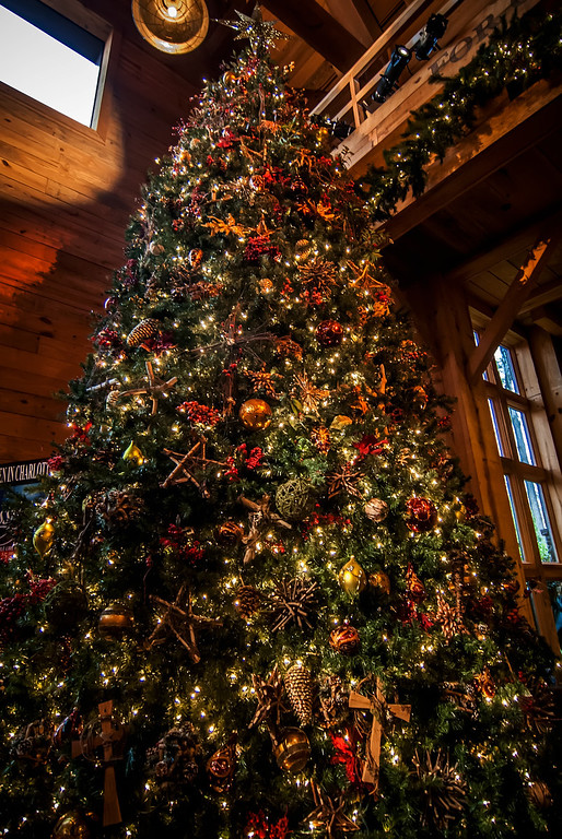 This dramatic image is of a very large indoor Christmas tree with lights, ornaments, balls, square gifts and more reflected against sectioned windows