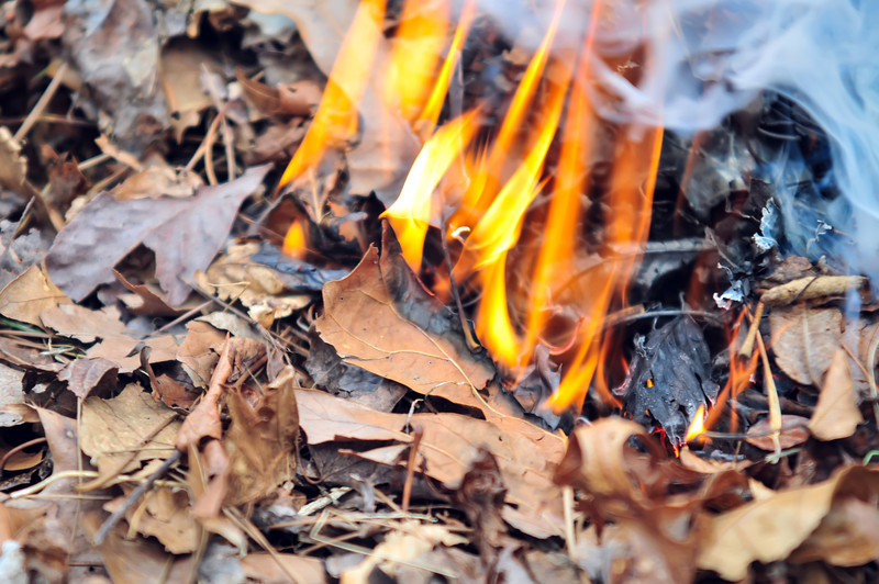 leaves burning hazard