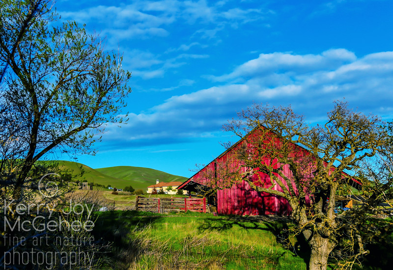 Red Barn on Morgan Territory Road