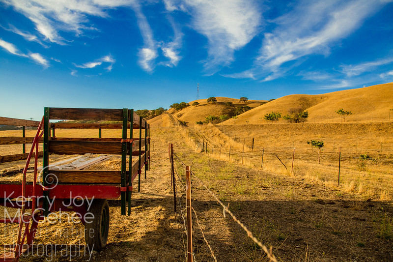 Red Hay Trailer