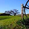 Stanley Ranch, LIvermore, CA