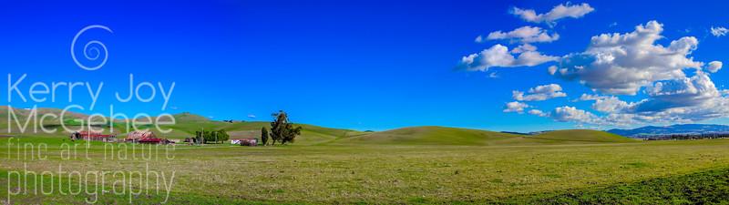 Livermore Panoramic