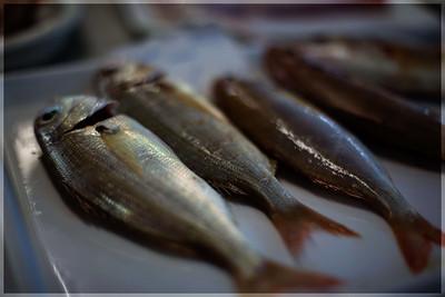 A Fishy Bokeh...