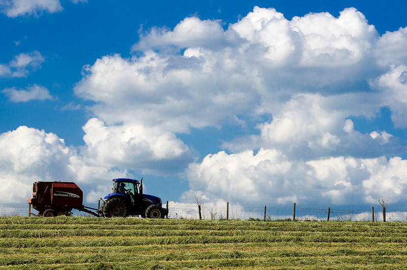 Dylan Buell | dylanphotog@gmail.com | @dylanphotog<br /> Travis Quarles uses a tractor to bale hay at one of the family's farm sites.