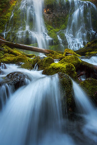 """PROXY FALLS MAGIC""Proxy Falls, Oregon CascadesWater cascades through the forest and foliage of Proxy Falls in the Cascades range of Oregon.© Chris Moore - Exploring Light PhotographyPURCHASE A PRINT"