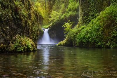 """PUNCHBOWL""Columbia Gorge, OregonSoft light highlights lush greens, Punchbowl Falls.© Chris Moore - Exploring Light PhotographyPURCHASE A PRINT"