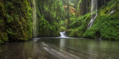 """WEEPING WALLS""Columbia GorgeThe ""weeping walls"" deep in the heart of Oregon's Columbia Gorge.© Chris Moore - Exploring Light PhotographyPURCHASE A PRINT"