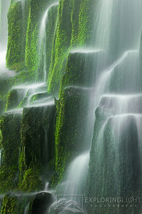 """GREEN GLORY""Proxy Falls, OregonOregon's Proxy Falls flowing over a staircase of mossy volcanic rock.© Chris Moore - Exploring Light PhotographyPURCHASE A PRINT"