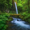 """WHISPERING FALLS""Columbia GorgeWaterfall and cascades through lush greens in a remote and wild area of the Columbia Gorge.© Chris Moore - Exploring Light PhotographyPURCHASE A PRINT"