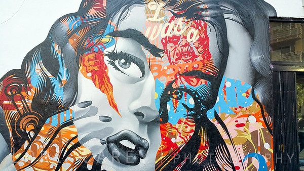 I Was A Botox Junkie by Tristan Eaton, LA Arts District