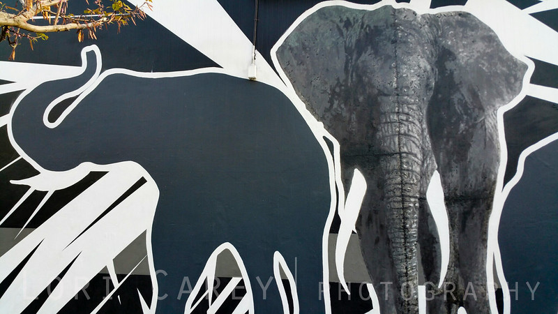 Every Piece of Ivory Comes From A Dead Elephant, Damon Martin, DTLA Arts District