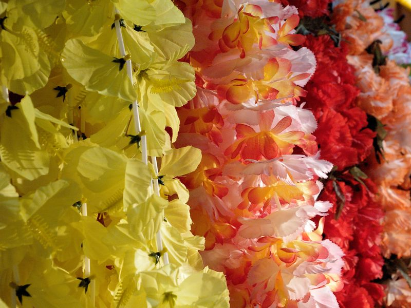 Leis on display in a local surf shop.