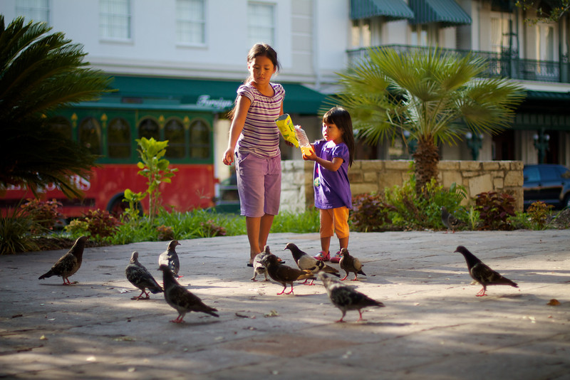 Feeding the Birds, Alamo Plaza - San Antonio, Texas