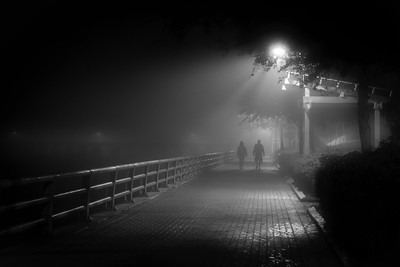 Night Scenes Across the River