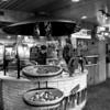 Airport Salt Lick, Austin-Bergstrom Airport - Austin, Texas