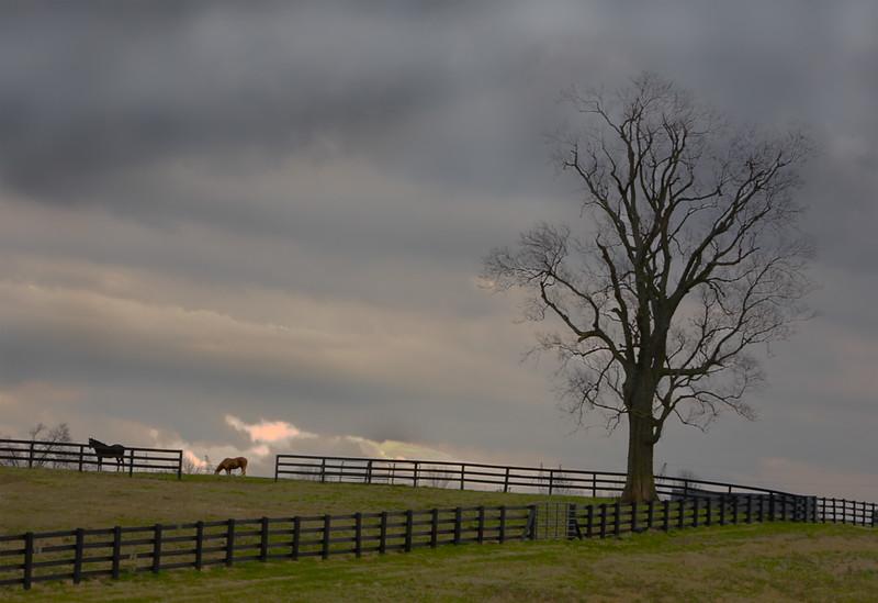 Kentucky, 2007