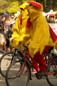 Tour De Clucks