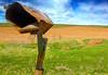 Rural Route, Iowa2011