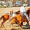 BT Rodeo 2012-2060