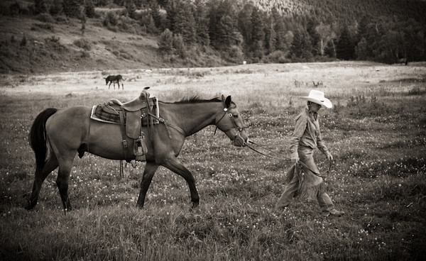RUGGED: Legacy of the American West