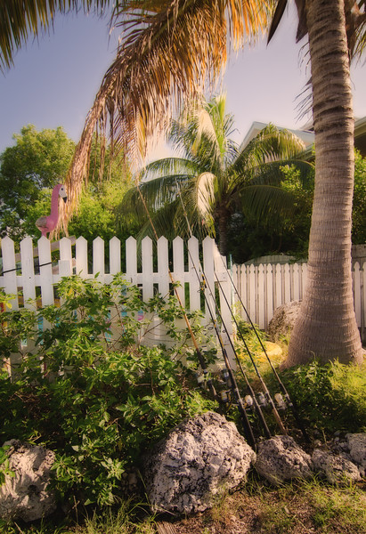 Palm tree, fence, and fishing poles.  Marathon, FL