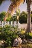 Palm tree, fence, and fishing poles.  Marathon, FL