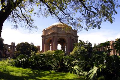 Presidio San Francisco California Bay Area - © Simpson Brothers Photography
