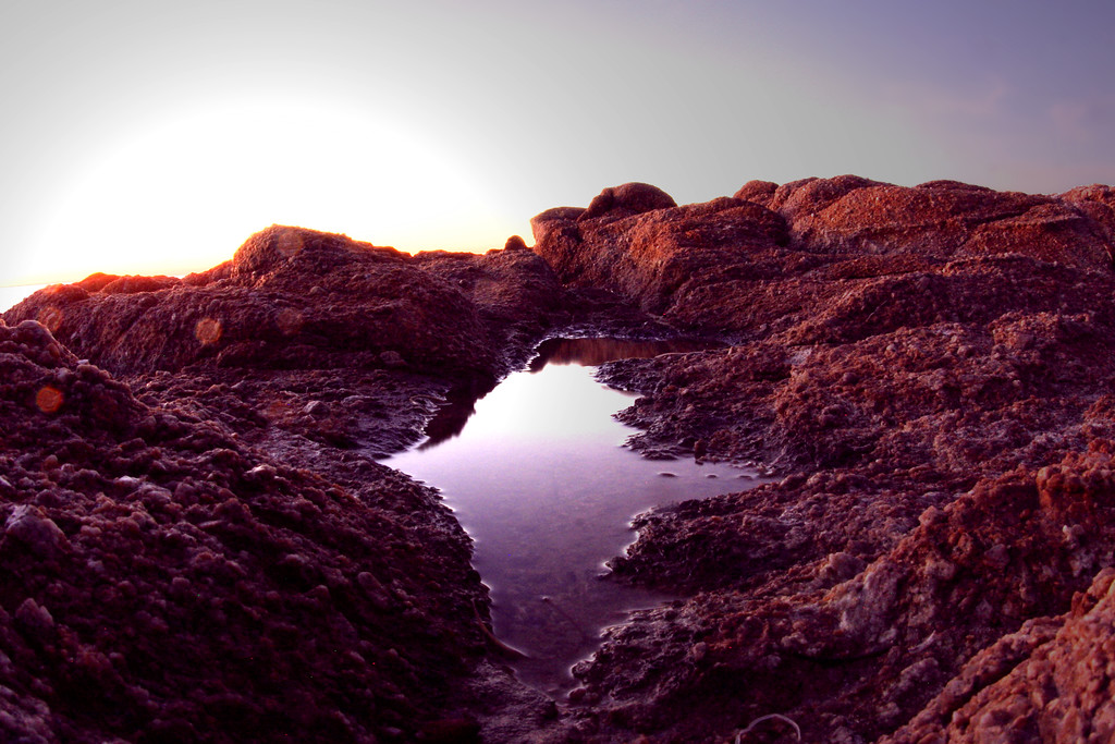 Tide pool on the rocks in Pacific Grove California - © Simpson Brothers Photography