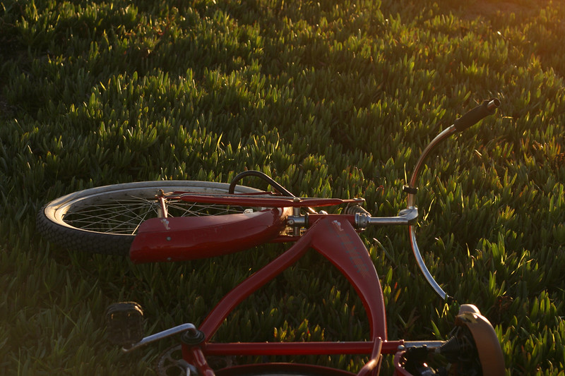 A Cruiser Bike laid in the Ice Plant at the Walton Lighthouse in Santa Cruz California - © Simpson Brothers Photography