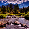 Yosemite River - © Simpson Brothers Photography