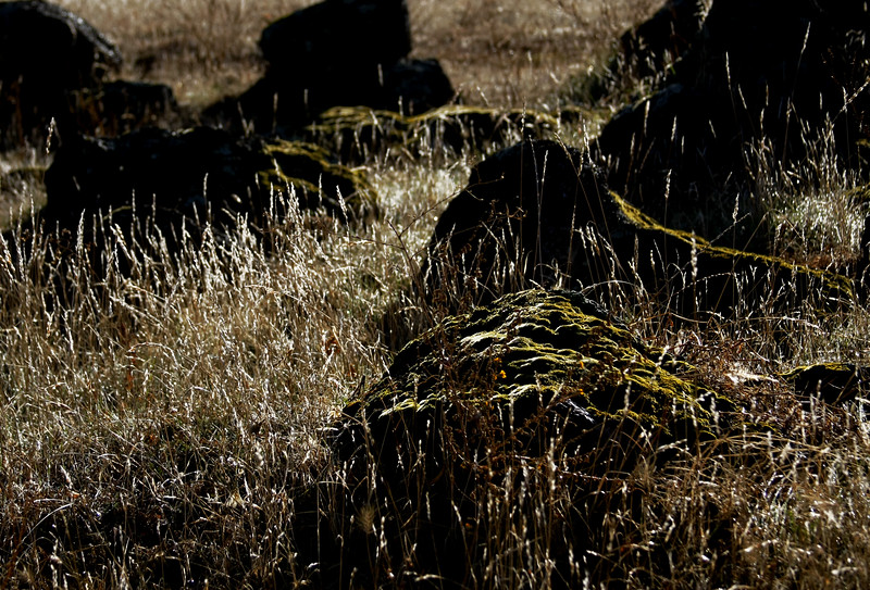Rocky terrain in Sonora California - © Simpson Brothers Photography