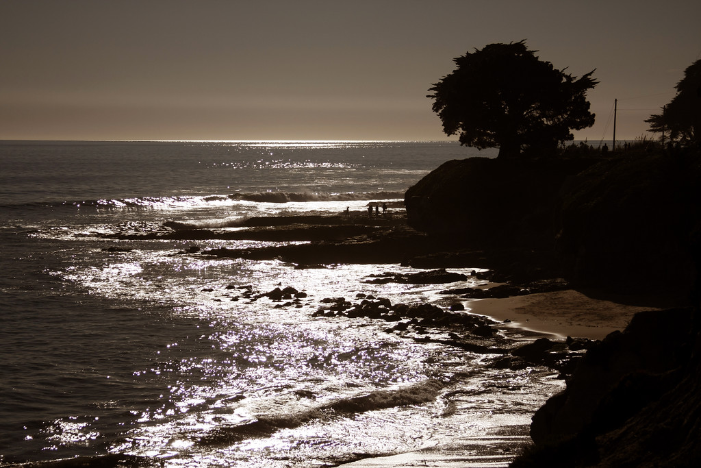 Santa Cruz - © Simpson Brothers Photography