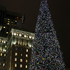 Christmas Tree in Union Square - © Simpson Brothers Photography