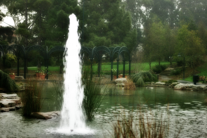 Pond at Lucas Arts - © Simpson Brothers Photography