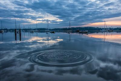 Riverside Reflection