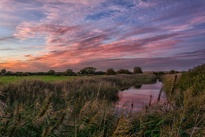 Boyton Marshes