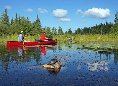 Canoe Country 010