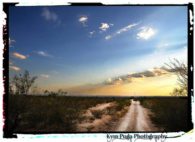 Summer Landscapes across Texas