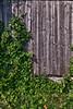 Ivy Barn - Fletcher, VT
