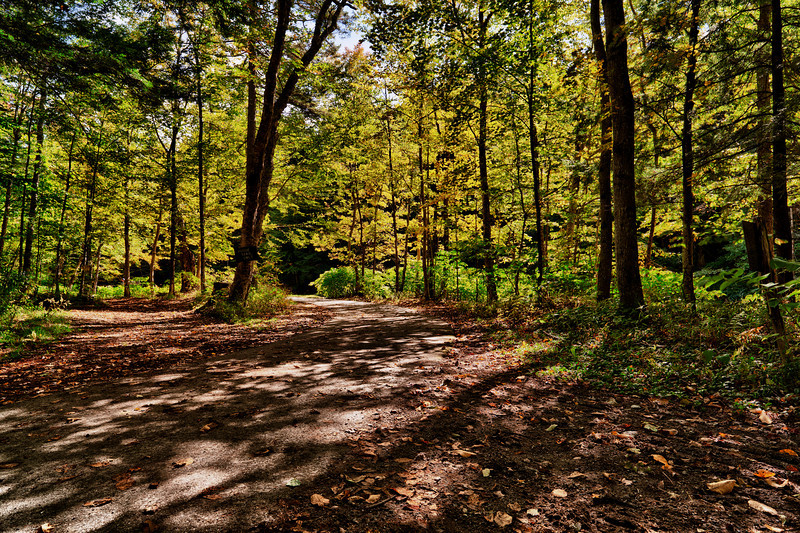 Sunny rec path - Stowe, VT
