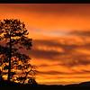 North Mesa Sunrise