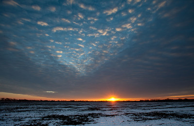1-12-11  Sunrise in Frisco, Texas. The conditions were perfect for photography, except it was very cold. I love the sun throwing light and the altocumulus clouds over an icy field.