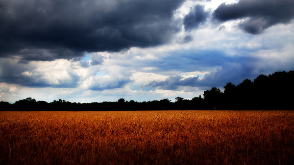 Passing Storm - My Farm