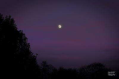 Squirrel Hil Moonrise I