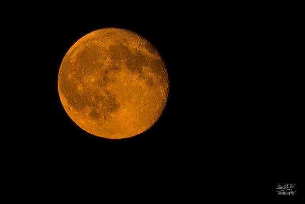 Orange Moon at the Cape