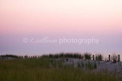 Sunrise over the dunes at Assateague Island.