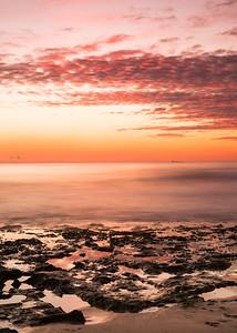 Cott Sunset (6 of 6)