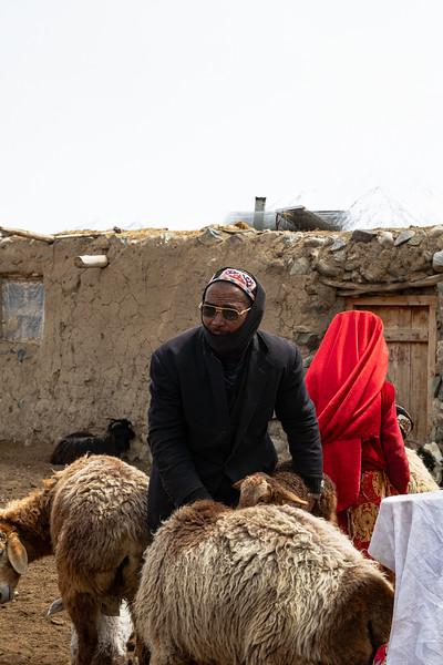 Pastoralism I
