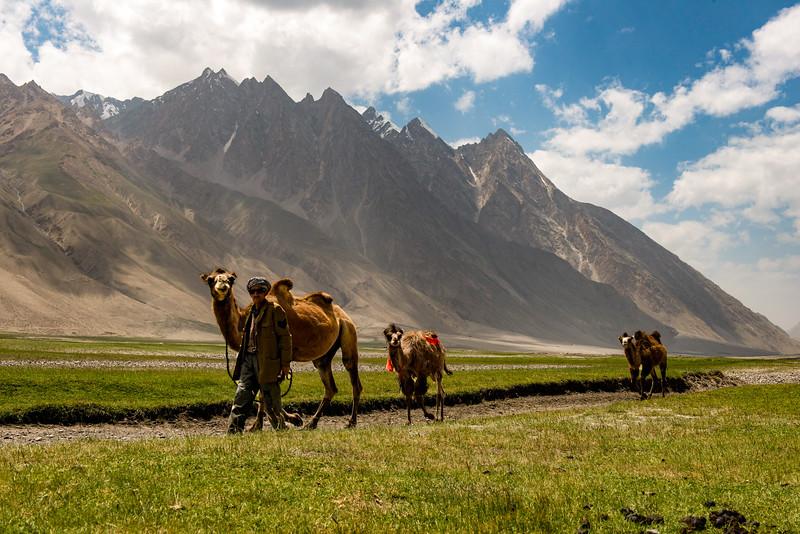 Inventing the Silk Roads
