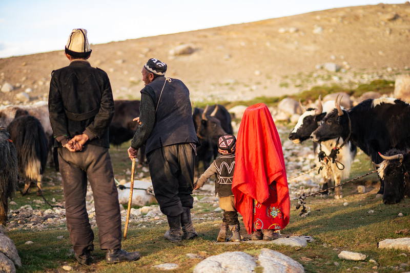 Pastoralism IV